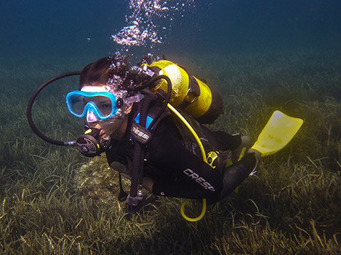 padi open water diver course at antibes